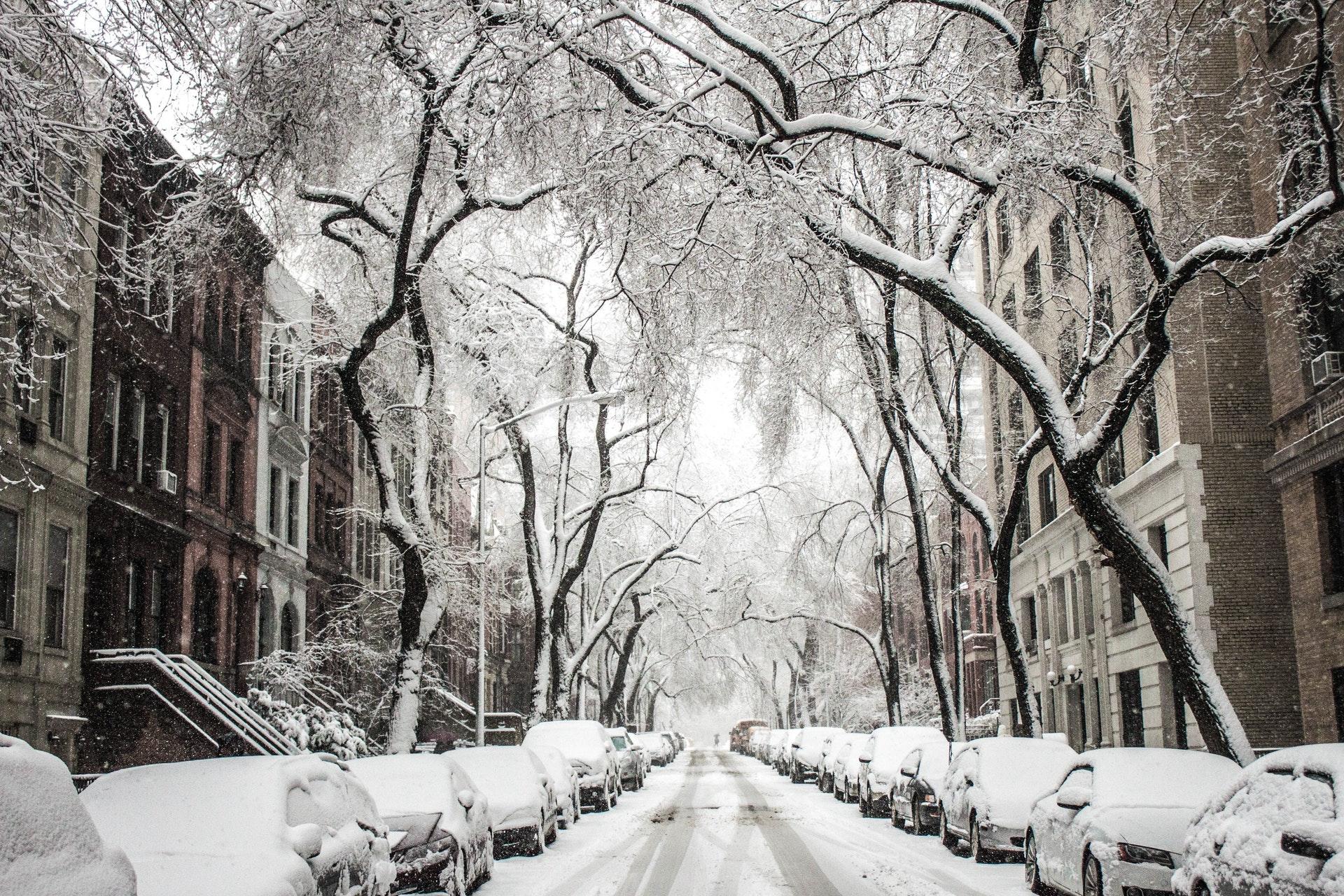 Si no sabes cómo actuar con la nieve, quédate en casa para prevenir accidentes.